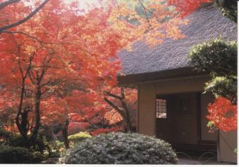 九年草庵(神埼市神埼町)
